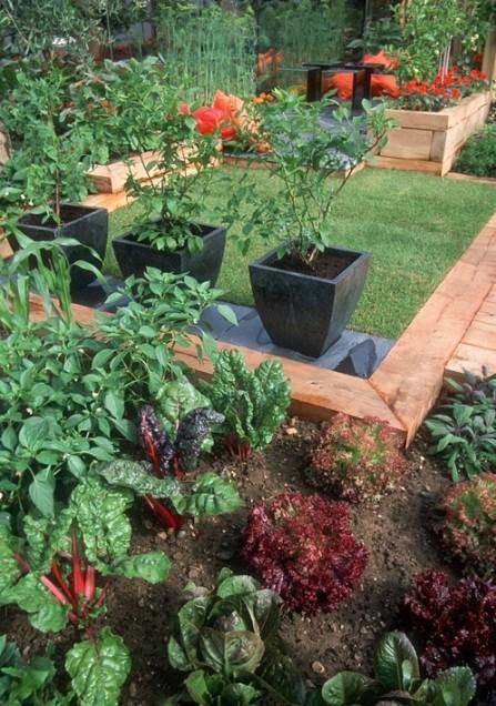 jardim fundo quintal : jardim fundo quintal: jardim como ninguém e entram em plena harmonia com o restante das