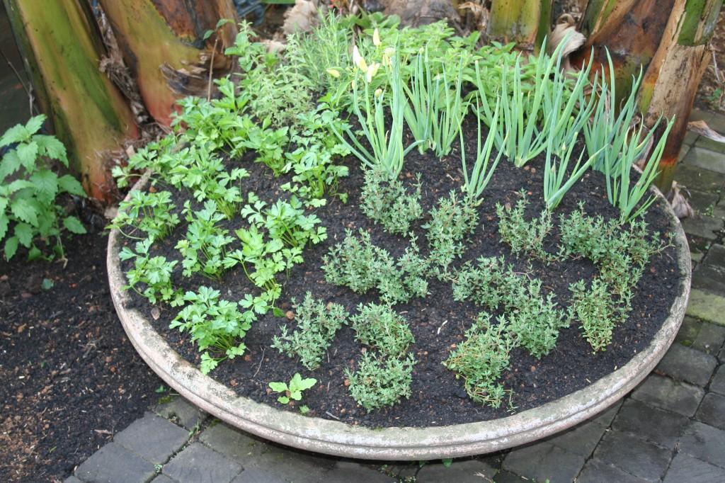 jardim como ninguém e entram em plena harmonia com o restante das
