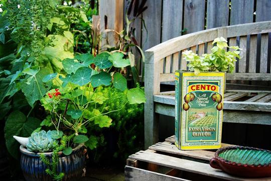 Novas formas de deixar sua casa mais verde