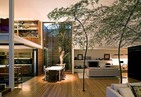 Decore sua casa com muito verde