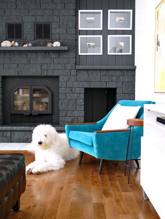 Sua casa de bem com o seu pet