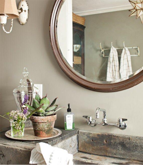 Decore seu lavabo ou banheiro com plantas suculentas