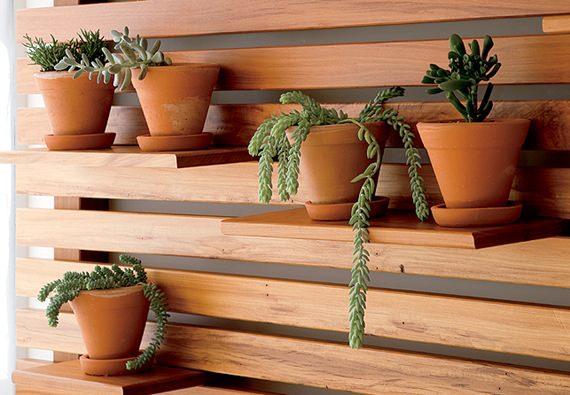 Jardim vertical de suculentas e plantas