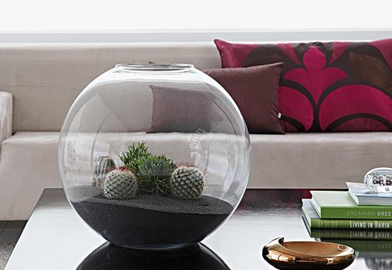 Decore sua casa com um lindo terrário feito em vaso de vidro