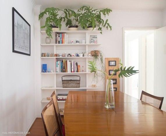 Plantas na estante
